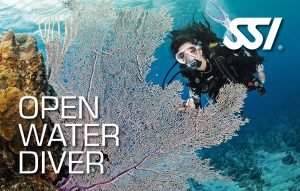 Open Water Diver (OWD) Winter-Format