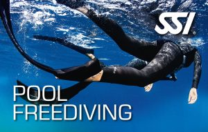 Freediving-Kurse