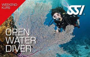 Open Water Diver (OWD) Wochenend-Format